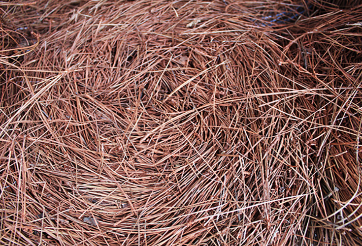 pinestraw supplier in baton rouge