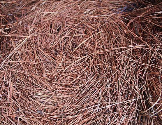 mobile pinestraw supplier
