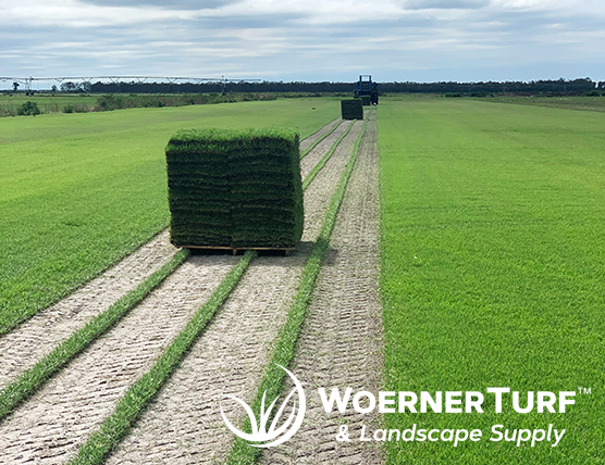 Pallet of Fresh Cut Turf Grass Sod - Woerner Turf & Landscape Supply of Mobile